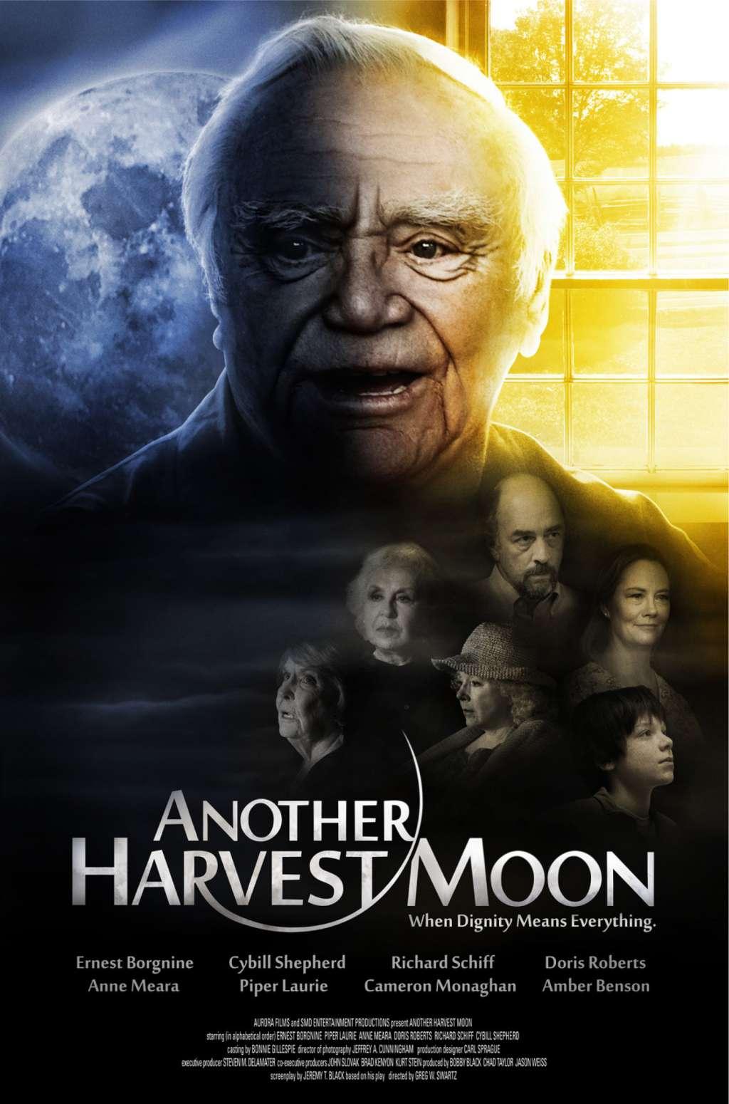Another Harvest Moon kapak