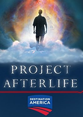 Project Afterlife kapak