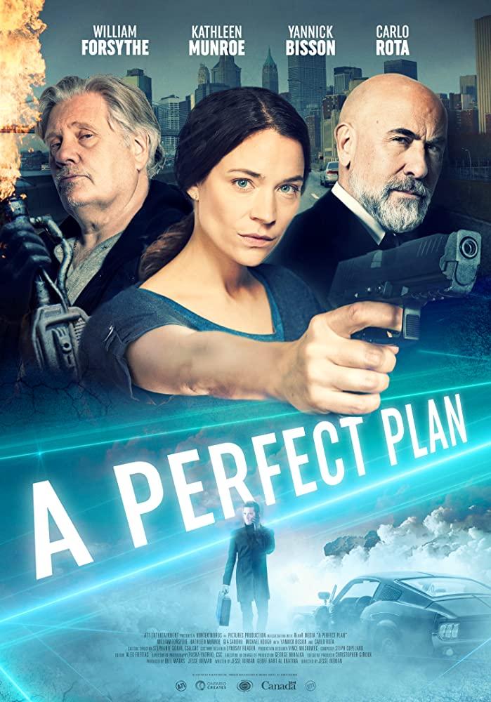 A Perfect Plan kapak