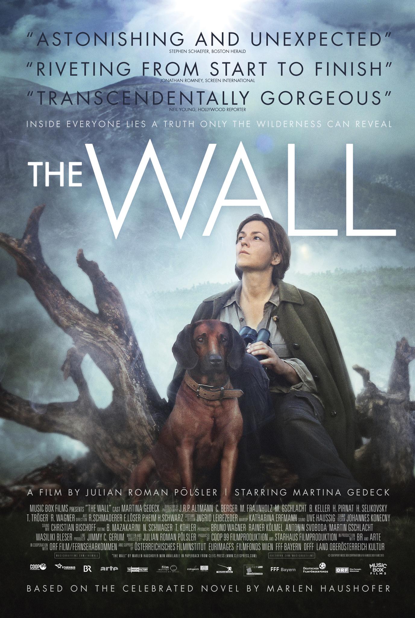 Die Wand kapak