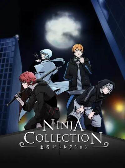 Ninja Collection kapak