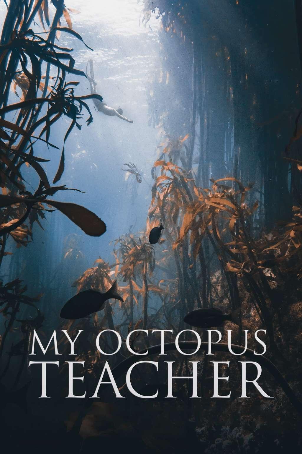 My Octopus Teacher kapak