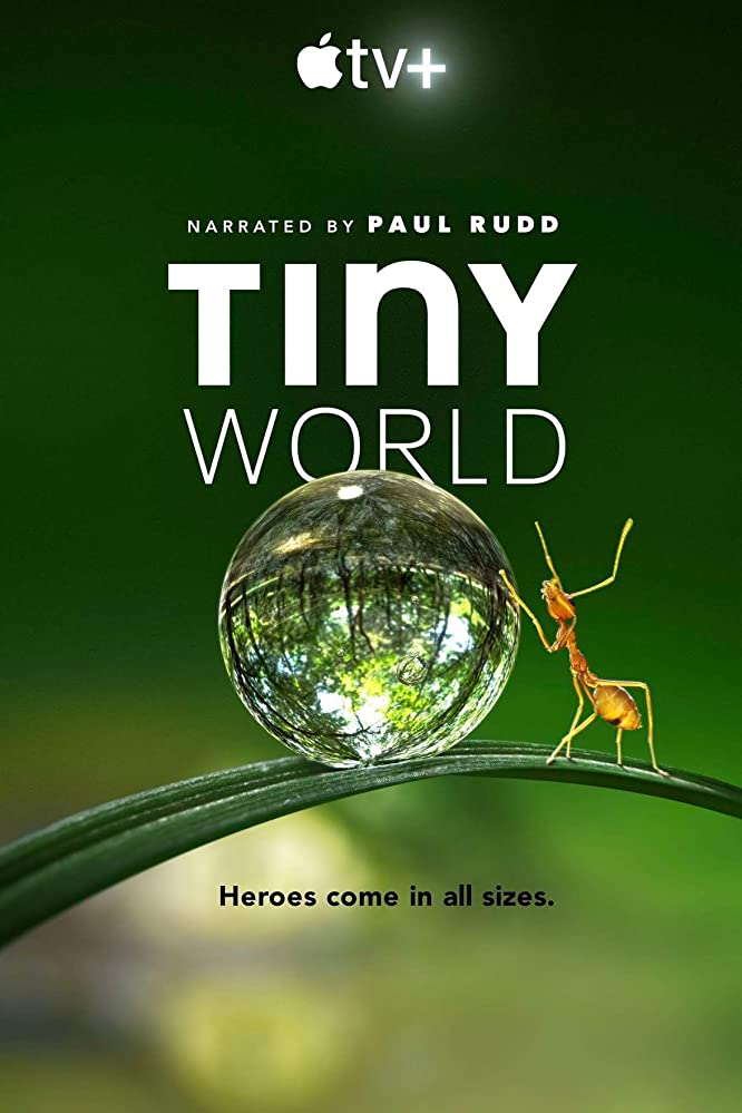 Tiny World kapak