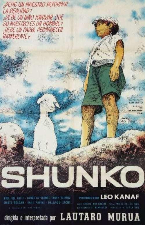 Shunko kapak