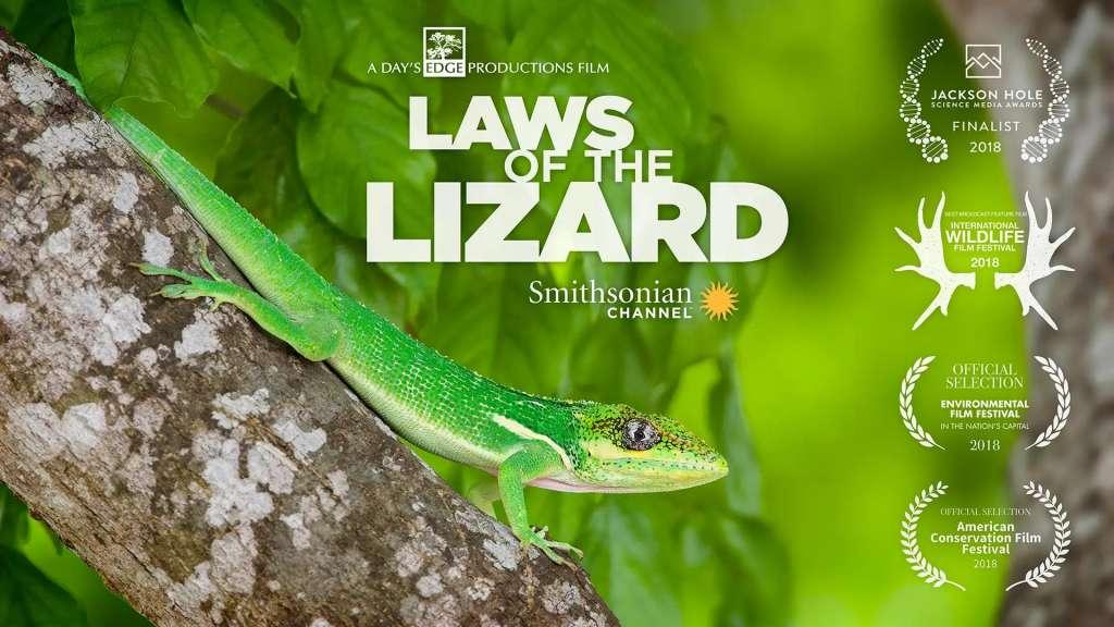 Laws of the Lizard kapak