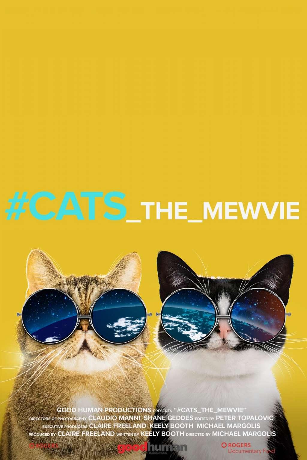 #cats_the_mewvie kapak