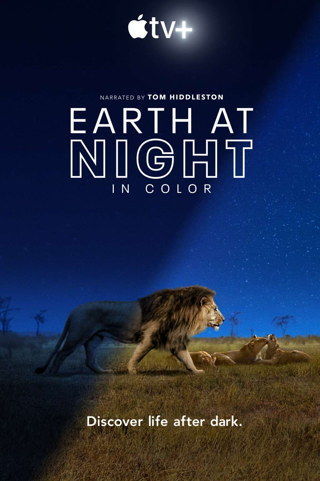Earth at Night in Color kapak