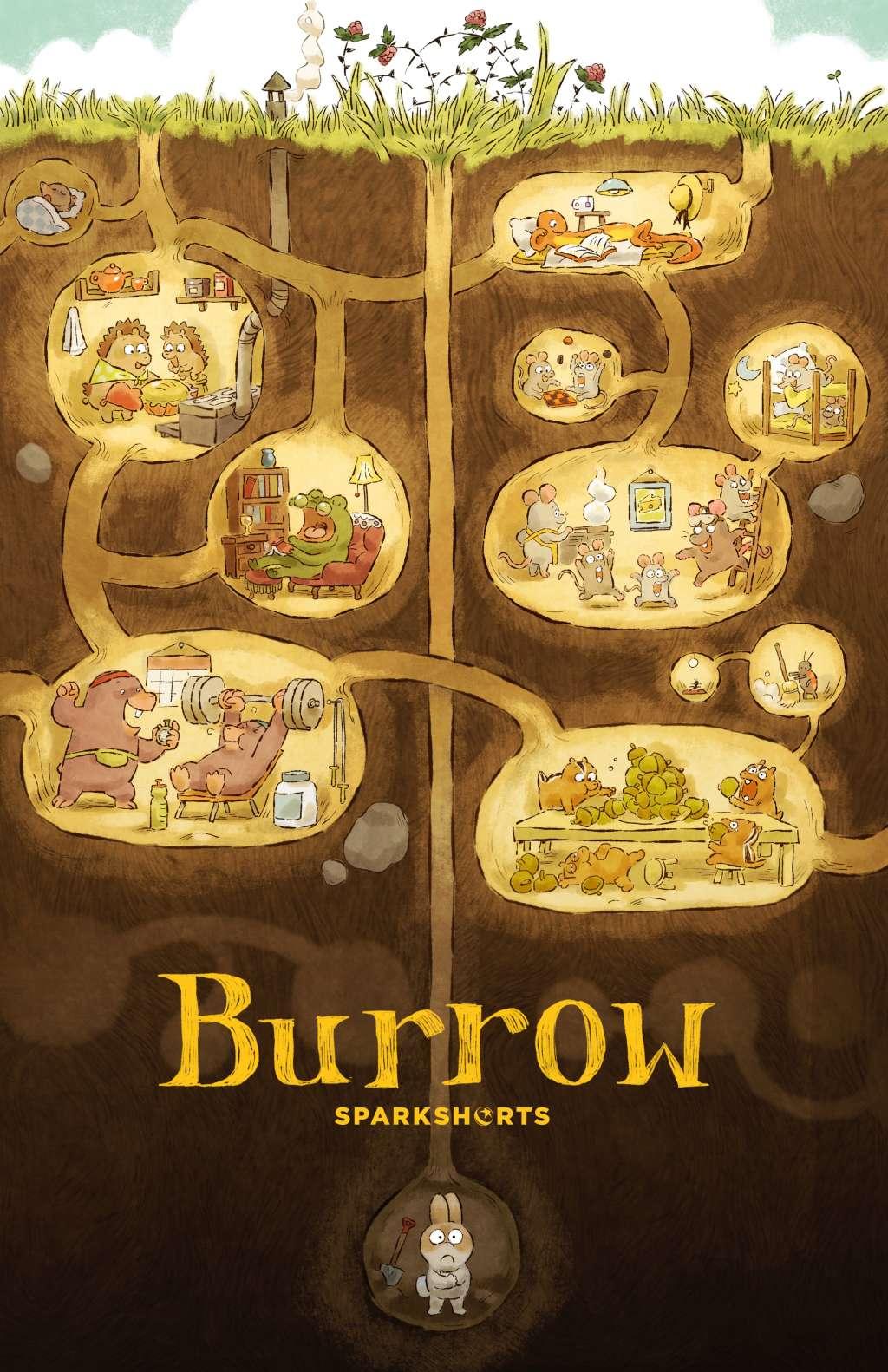 Burrow kapak