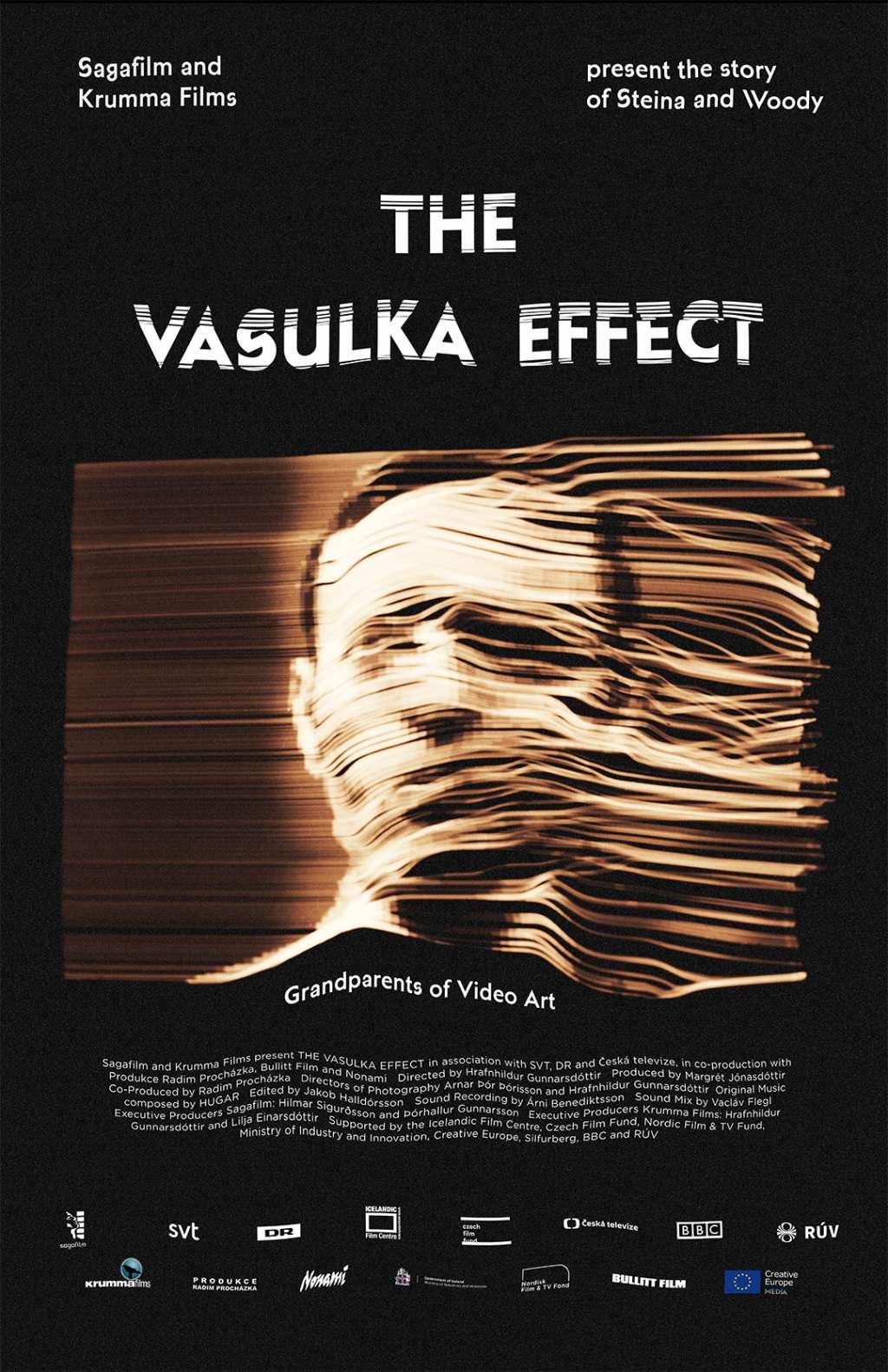 The Vasulka Effect kapak