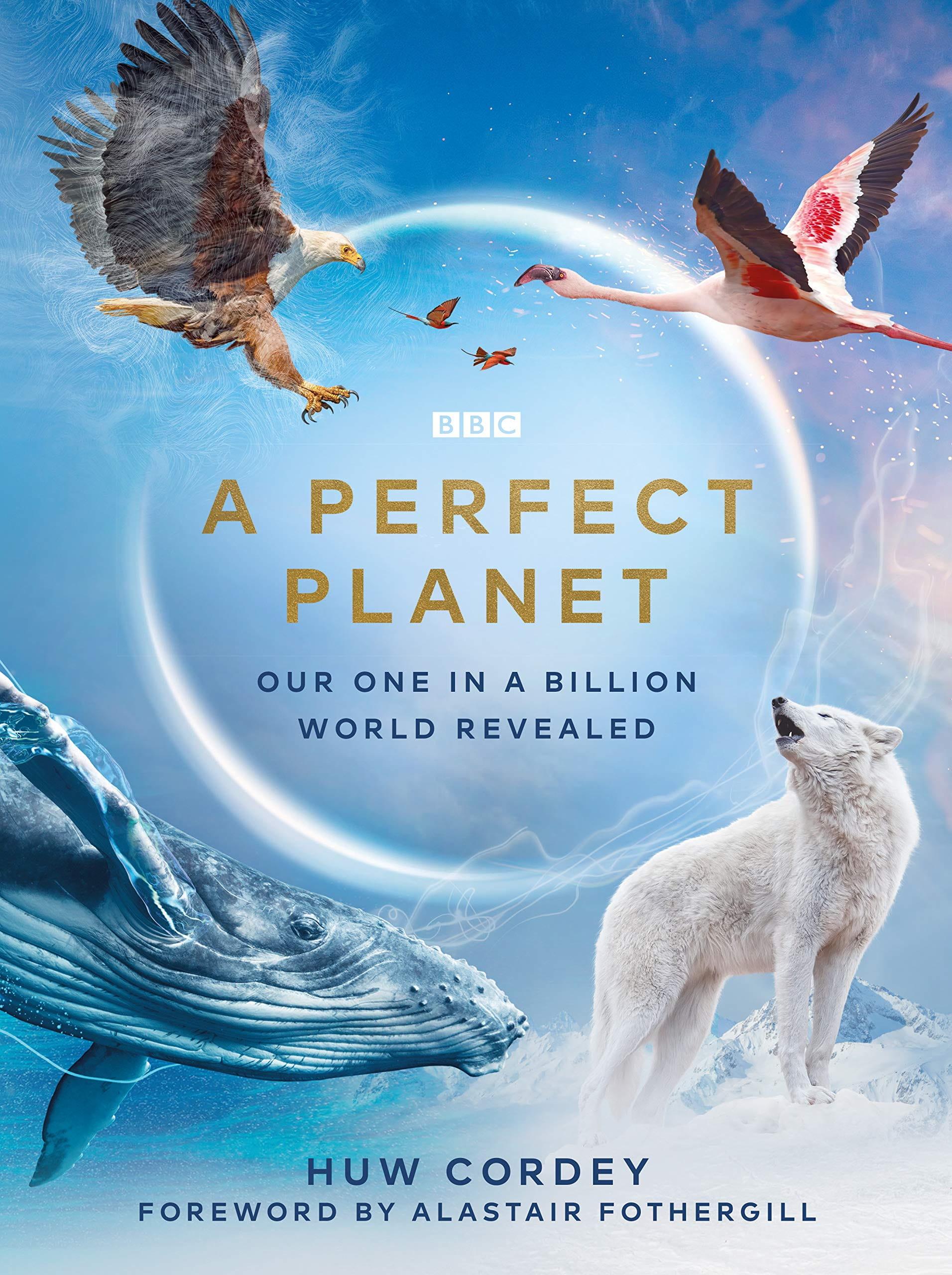 A Perfect Planet kapak