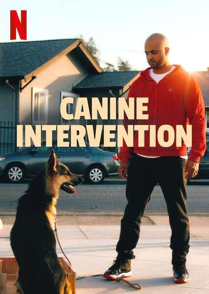 Canine Intervention kapak