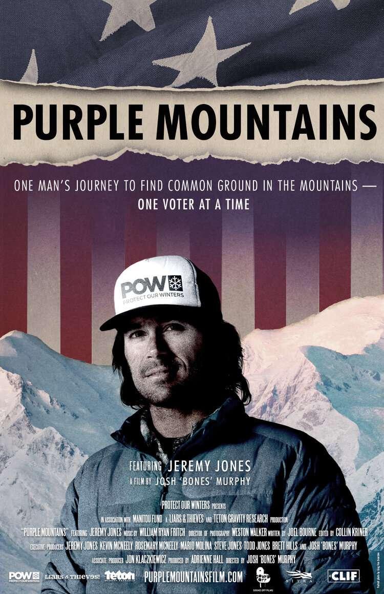 Purple Mountains kapak