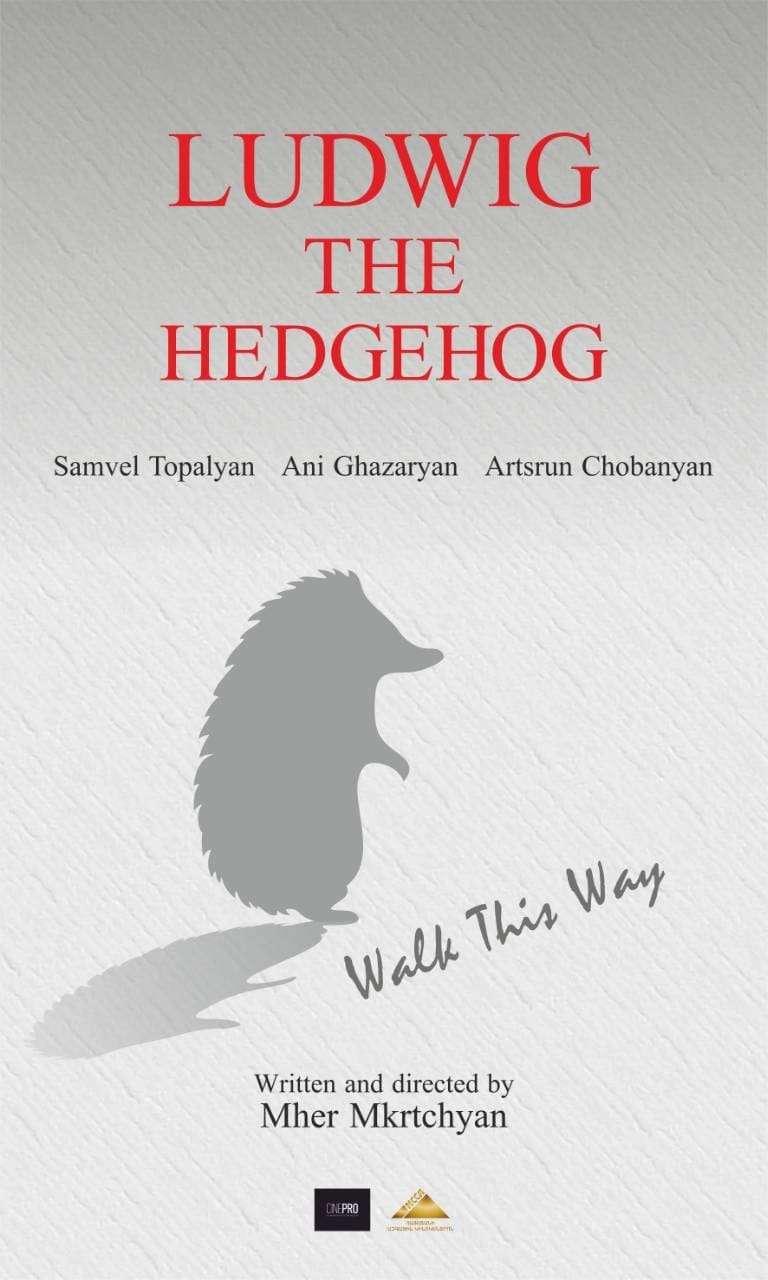 Ludwig the Hedgehog kapak