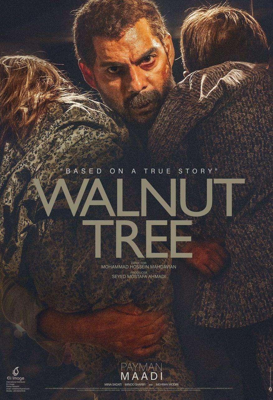 Walnut Tree kapak