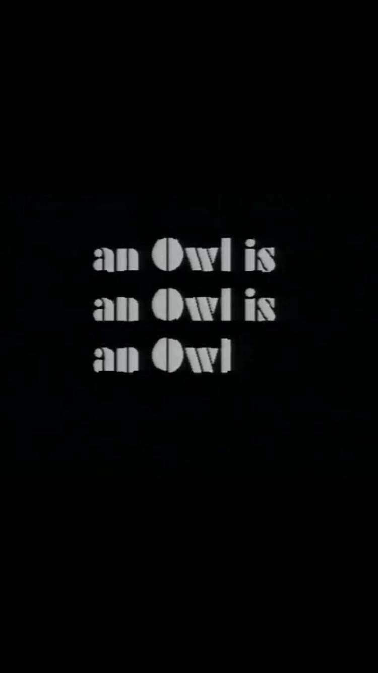 An Owl Is an Owl Is an Owl kapak