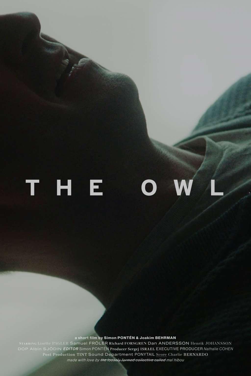The Owl kapak