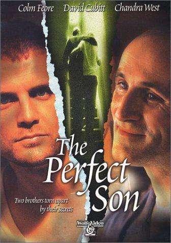A Perfect Son kapak