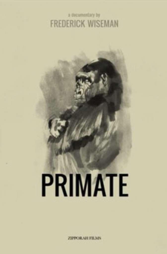 Primate kapak