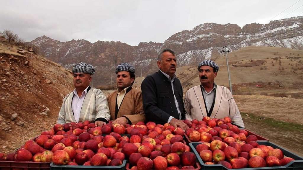 1001 Apples kapak