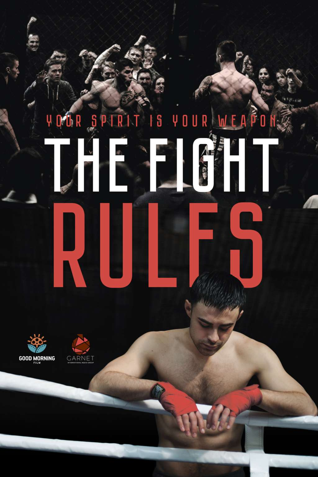 The Fight Rules kapak