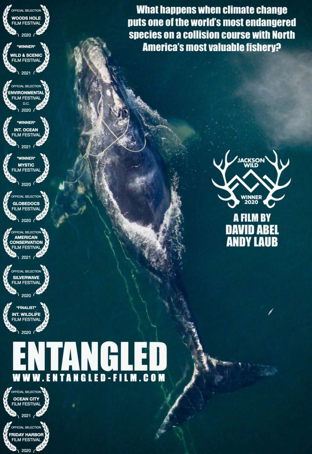 Entangled: The Race to Save Right Whales from Extinction kapak