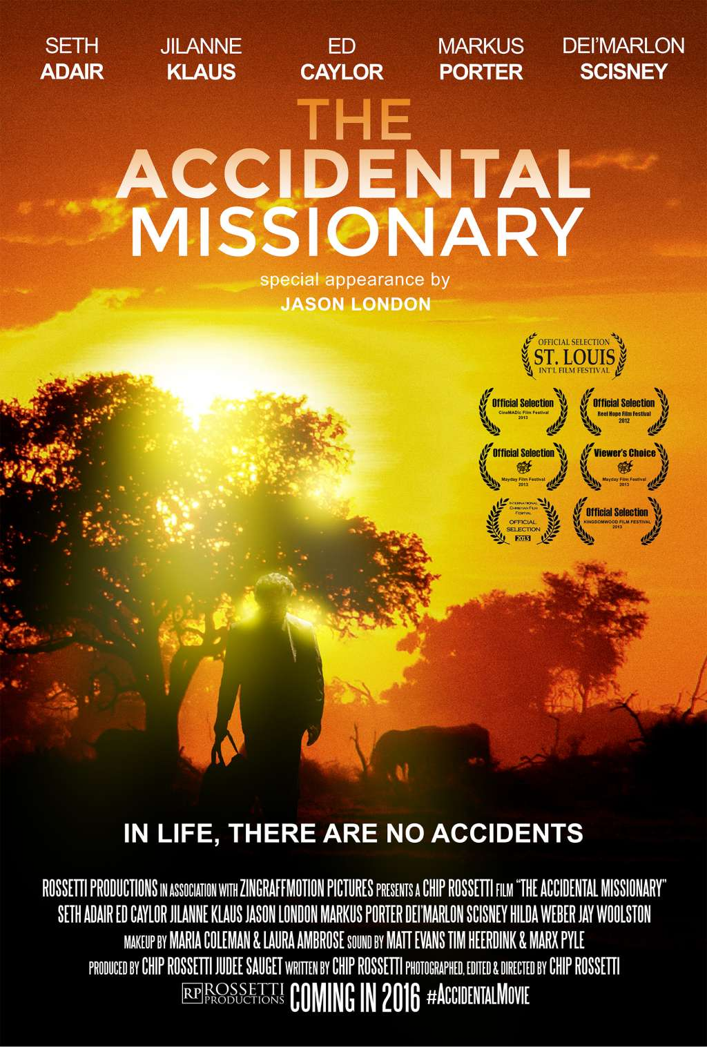 The Accidental Missionary kapak