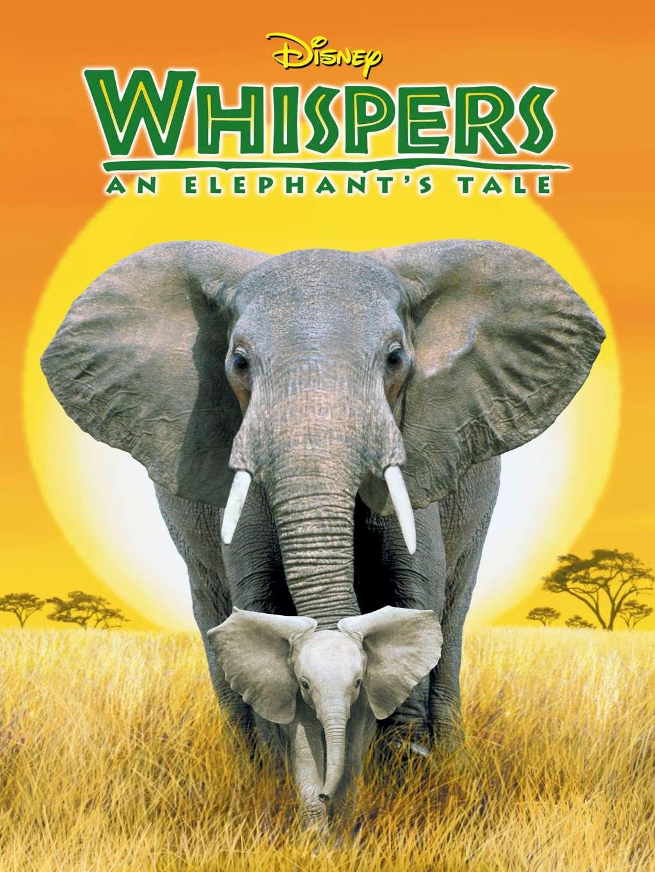 Whispers: An Elephant's Tale kapak