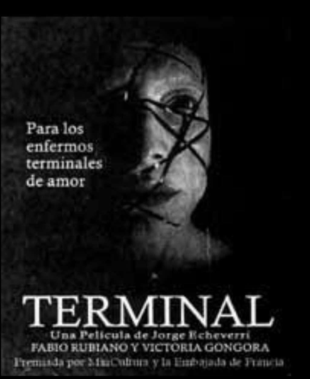 Terminal kapak