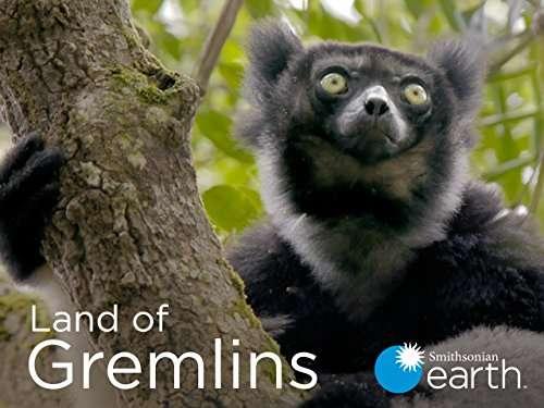Land of Gremlins kapak