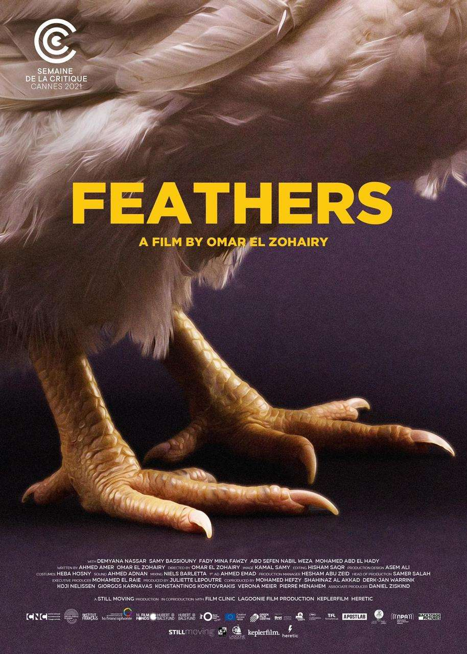 Feathers kapak