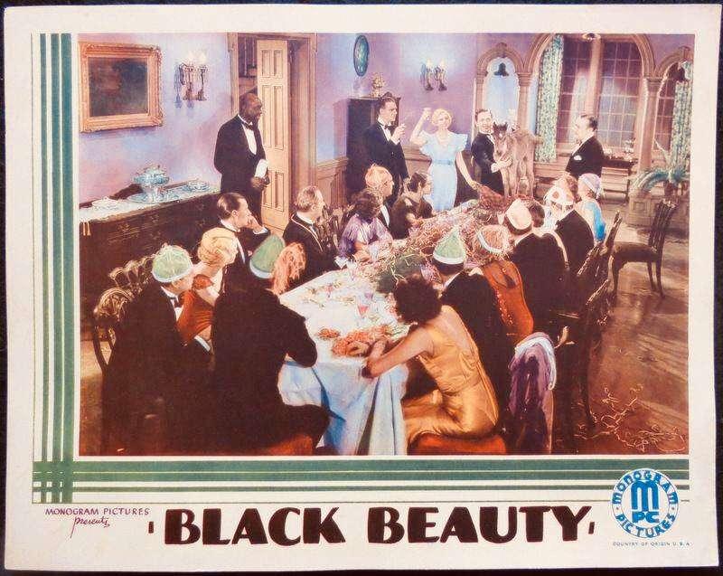 Black Beauty kapak