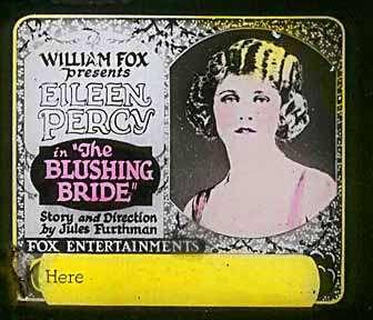 The Blushing Bride kapak
