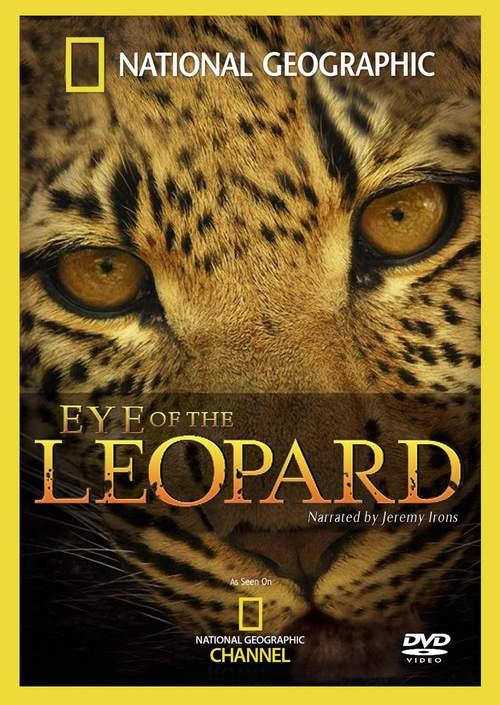 Eye of the Leopard kapak