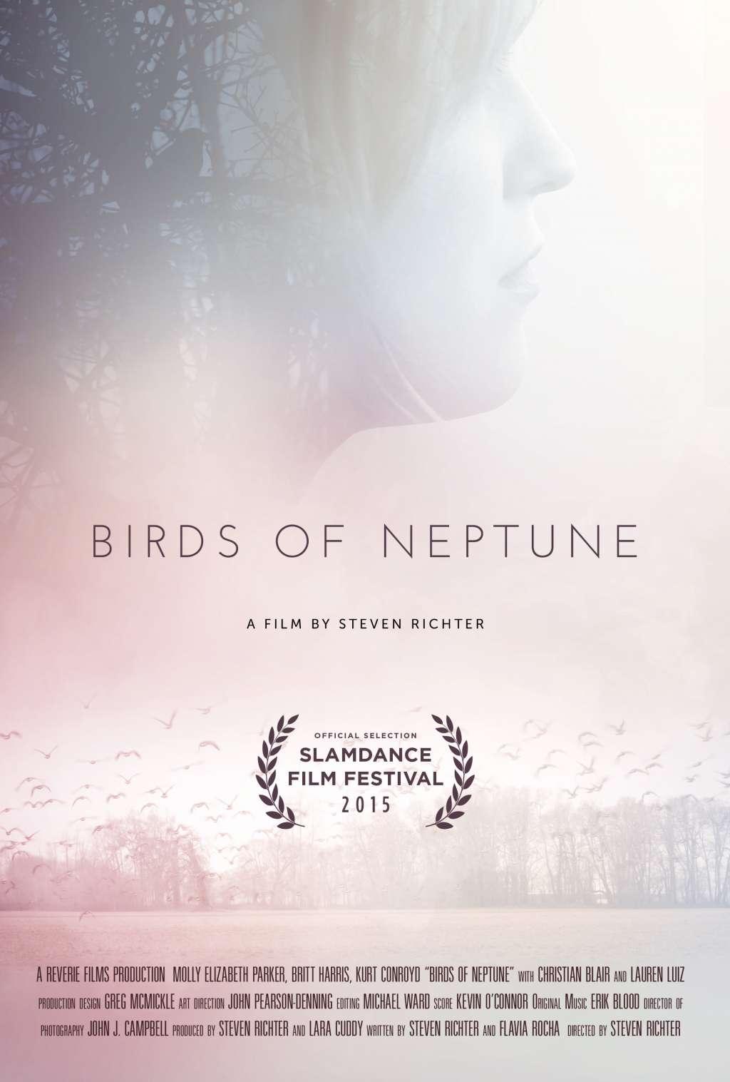 Birds of Neptune kapak