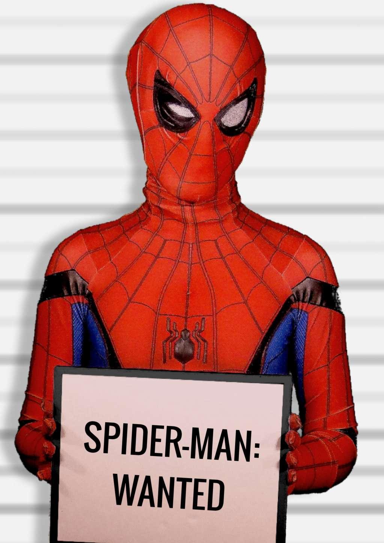 Spider-Man: Wanted kapak