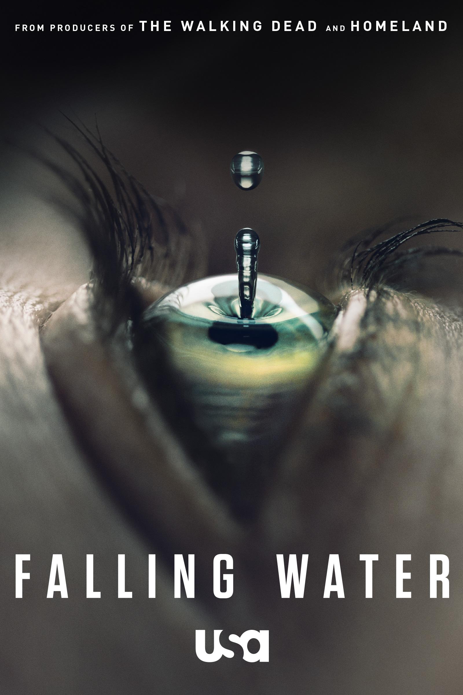 Falling Water kapak