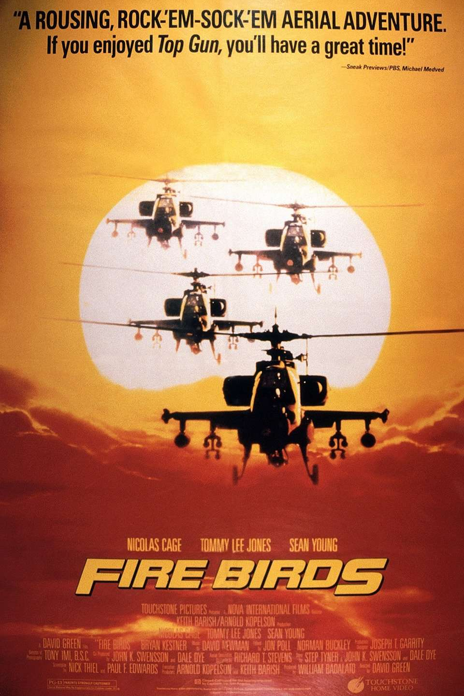 Fire Birds kapak