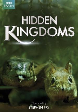 Hidden Kingdoms kapak