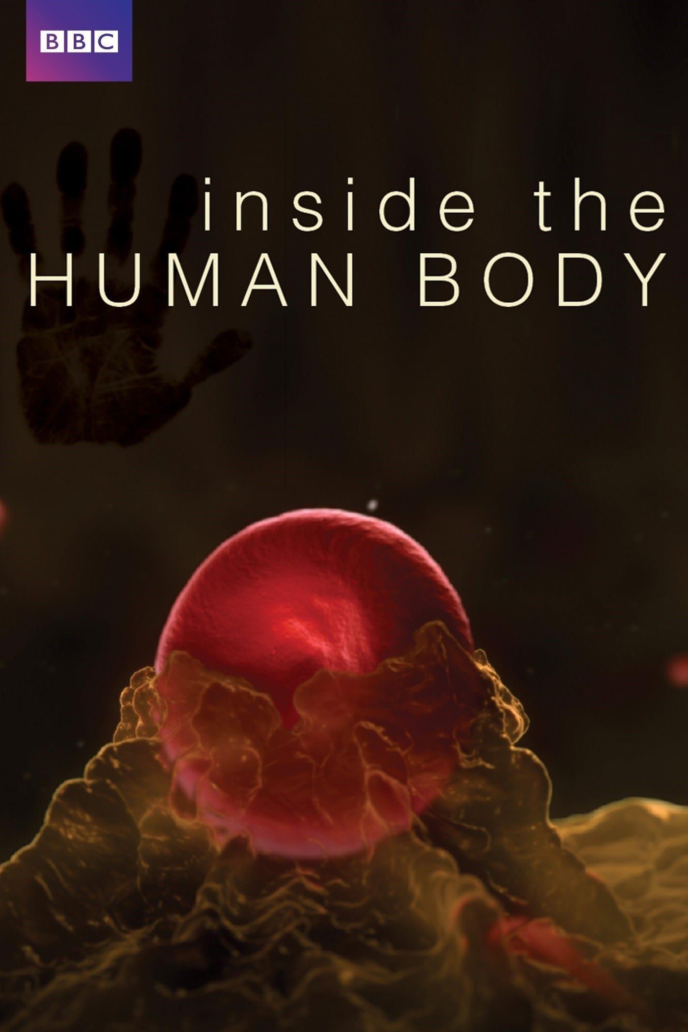 Inside the Human Body kapak