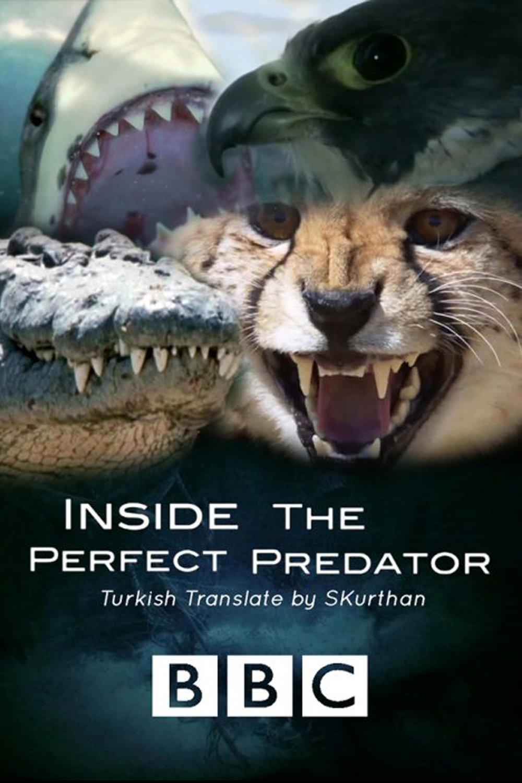 Inside the Perfect Predator kapak