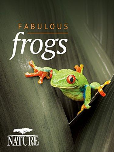 Nature Fabulous Frogs kapak