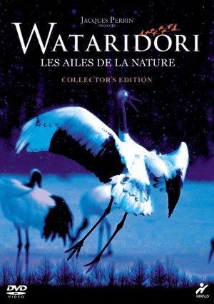 Les ailes de la nature kapak