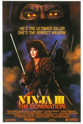 Ninja III: The Domination kapak