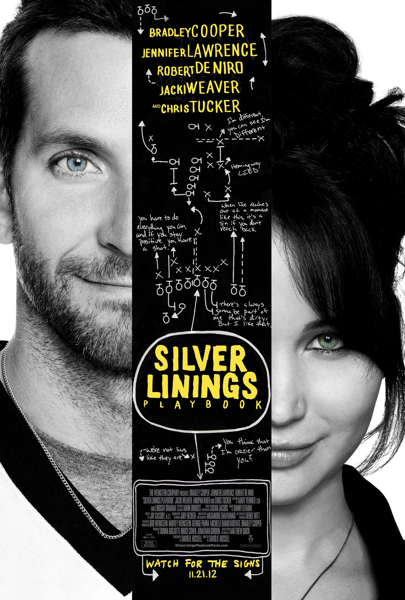 Silver Linings Playbook kapak