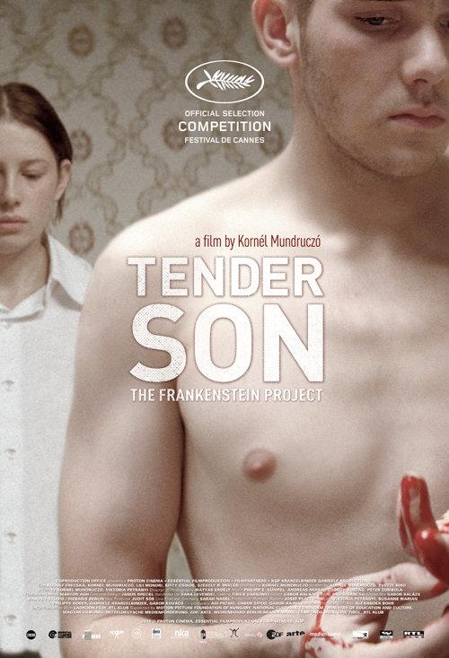 Tender Son: The Frankenstein Project kapak