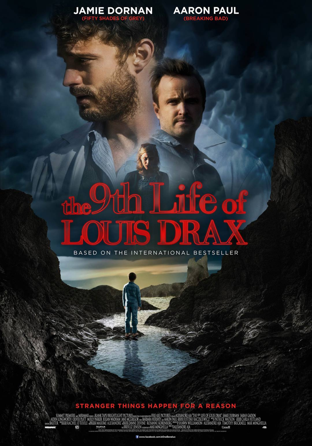 The 9th Life of Louis Drax kapak