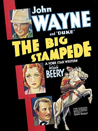 The Big Stampede kapak