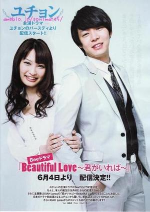 Beautiful Love: Kimi ga Ireba kapak