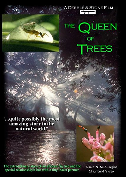 The Queen of Trees kapak