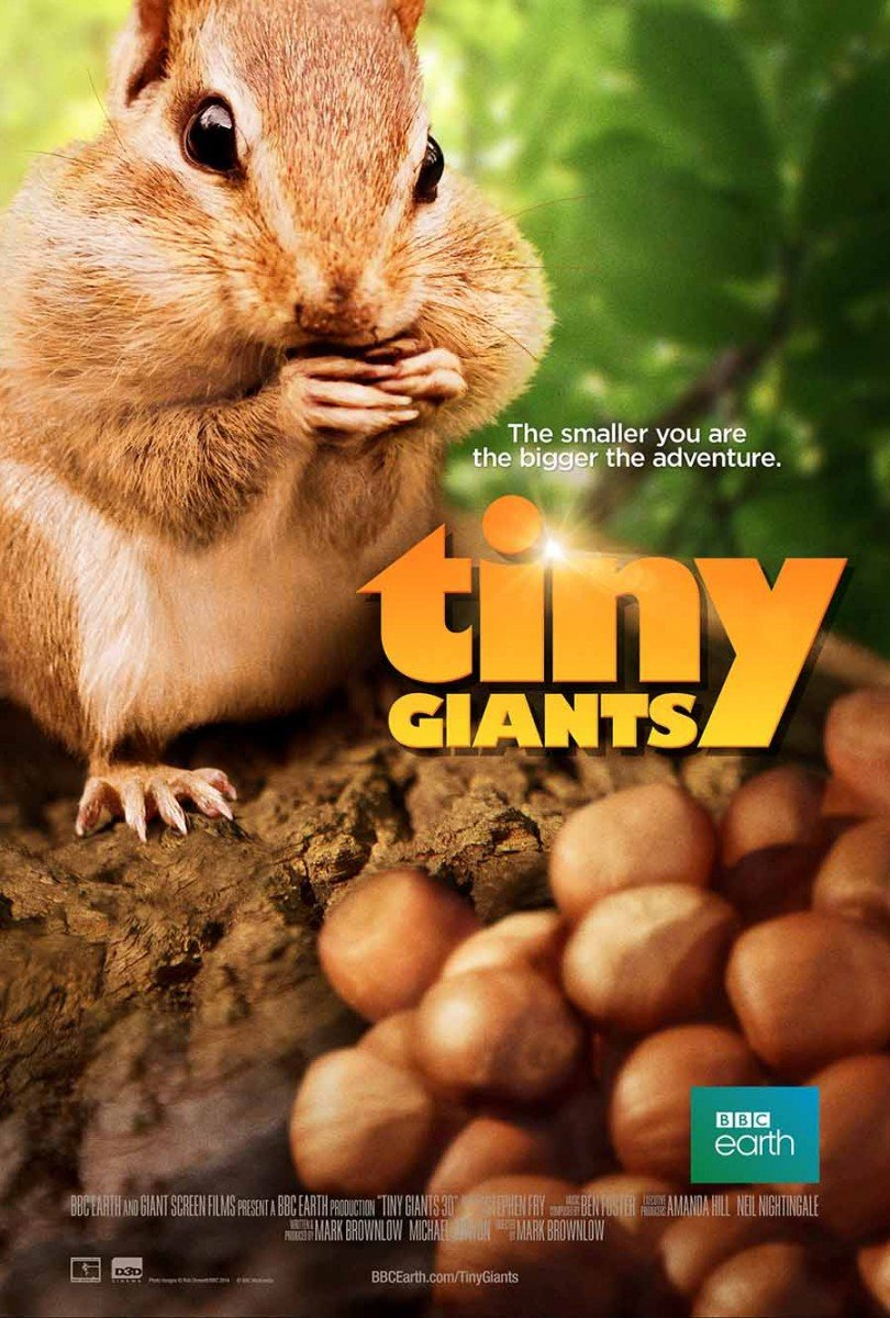 Tiny Giants 3D kapak